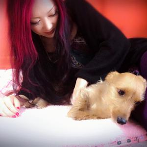 動物さんとの絆を深めるアニマルコミュニケーション