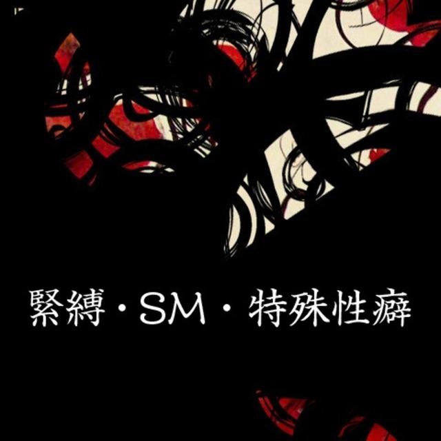 緊縛・SM・特殊性癖の小説をお書きします
